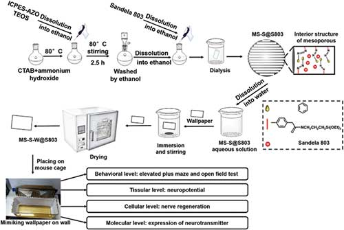 Journal of biomedical nanotechnology synthesis characterization and in vitro evaluation of dual phredox sensitive marine laminarin based nanomedicine carrier biomaterial for cancer therapy fandeluxe Gallery